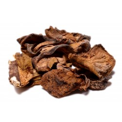 Dried Porcini Mushroom