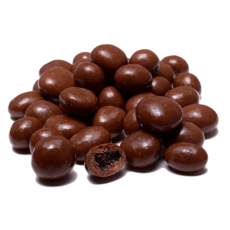 Raisins in Sugar Free Chocolate