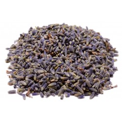 Lavender Flower Herbal