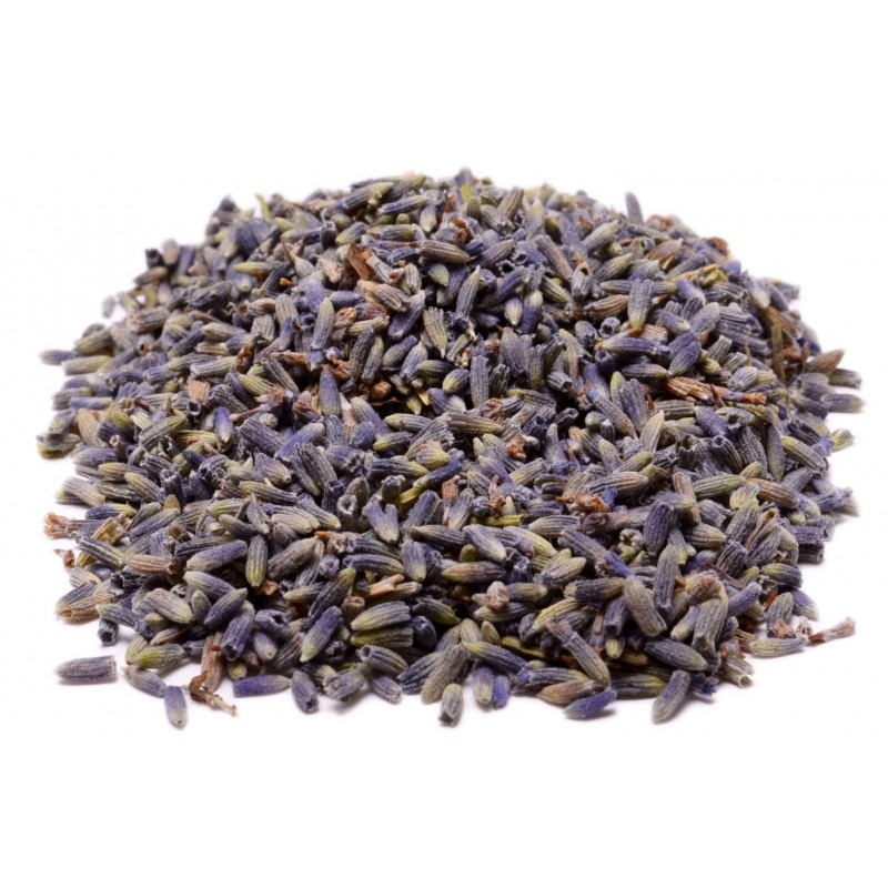 Lavender Flower Herbal