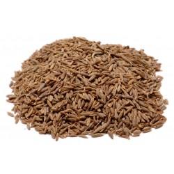 Cumin Seed Whole