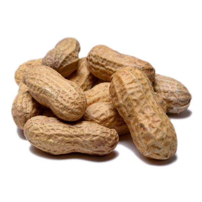 In Shell Peanuts Roasted No Salt