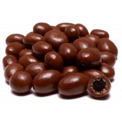 Chocolate Covered Raisins